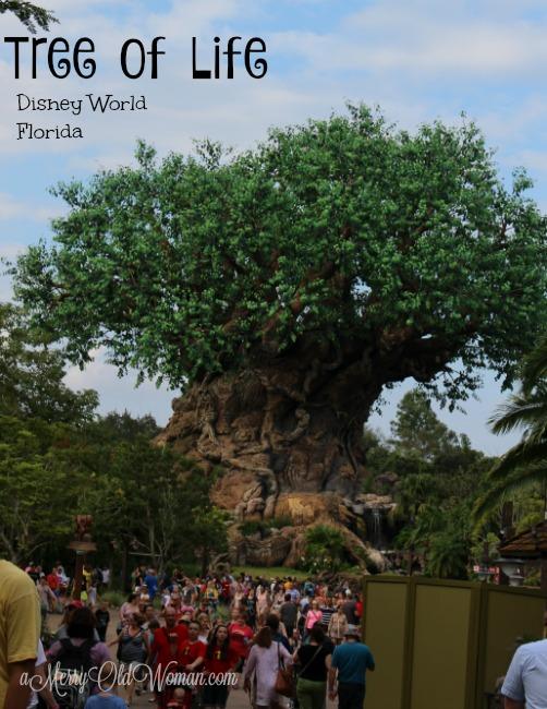 Tree of Life Disney World FL