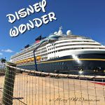 Cruise Tips and Advice for First Time Cruisers